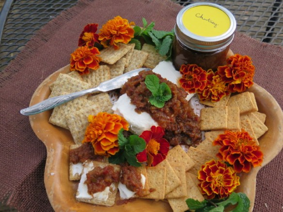 chutney and crackers on a tray Copy of IMG_0468_1