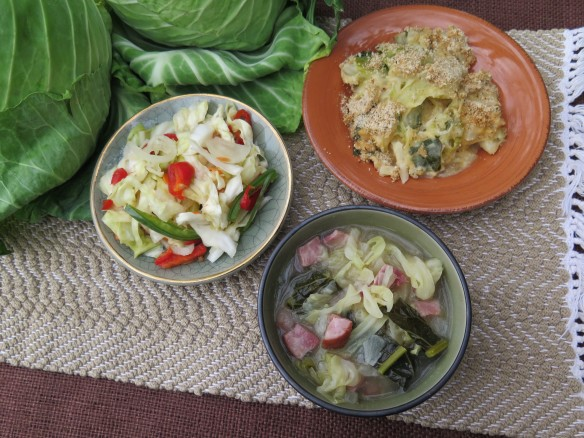 three cabbage recipes - 2 - IMG_1787_1