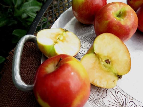 Braeburn apples - IMG_3084_1