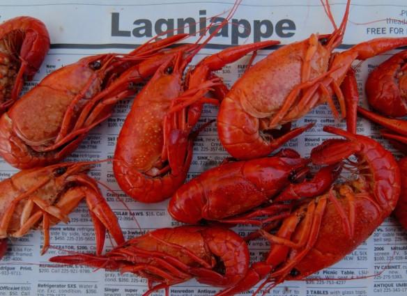 boiled crawfish - 2cropped - IMG_3557_1
