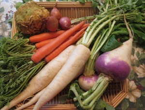 vegetables 1 - IMG_3796