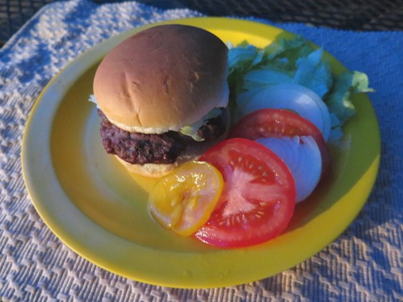 hamburger - 1 - IMG_4523_1