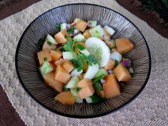 Fresh Melon Salsa - 1 - IMG_5220_1