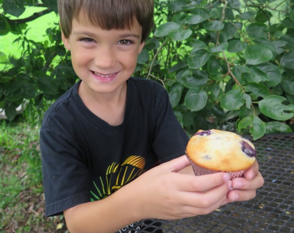 Grandson holding muffin - IMG_5478_1