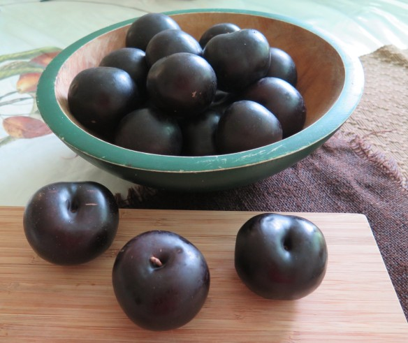 bowl of plums - IMG_6202_1