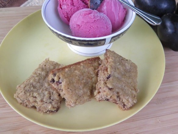Oatmeal Bars and Frozen Spiced Plum Yogurt - 1 - IMG_6296_1