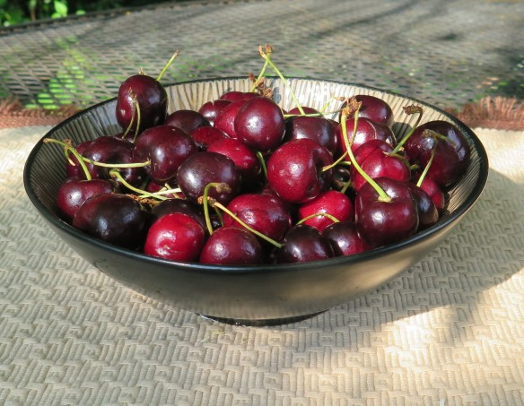 Ripe Cherries - IMG_6406_1