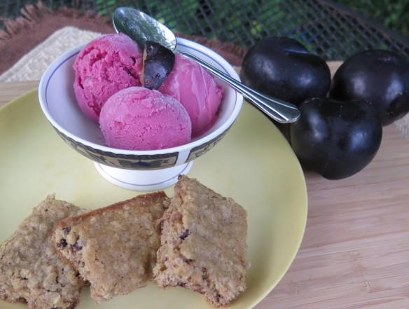 Spicy Plum Frozen Yogurt - 3 - IMG_6296_1