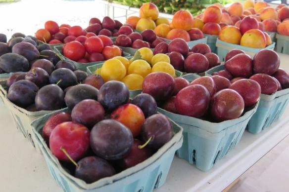 cartons of new york plums - IMG_6573_1