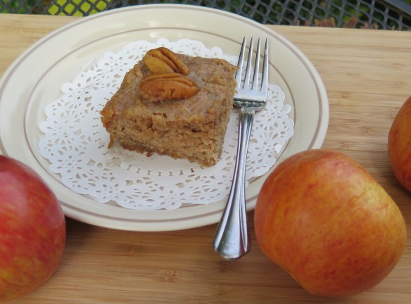 Easy Apple Cake - 4 - IMG_7464_1