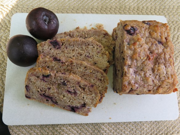 Tangy plum bread beyondgumbo this quick bread is very simple to make very healthy and best of all quite delicious it makes a great breakfast bread or snack and the aromatic flavors forumfinder Images