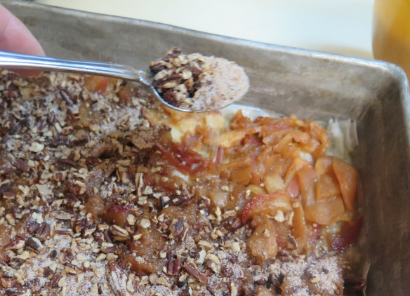 apple and pecan filling on fillo dough - IMG_0216