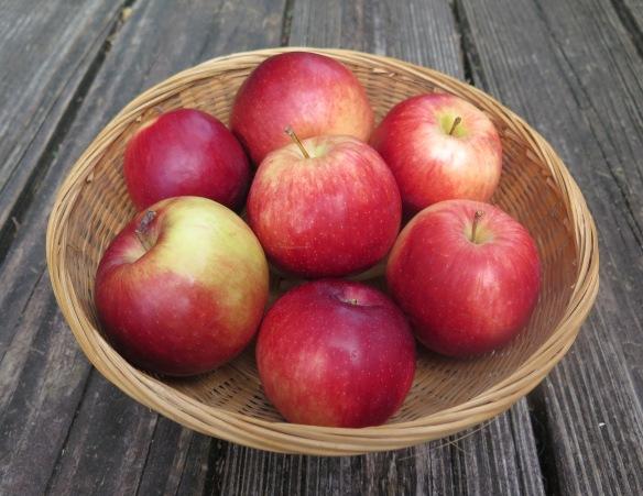 Empire Apples - 4 - IMG_0044
