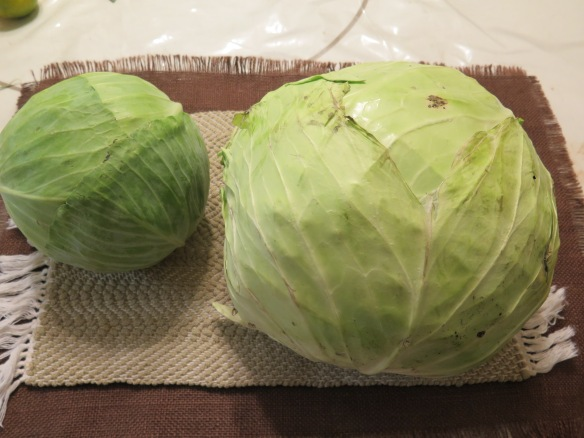 Two Cabbages - IMG_8291