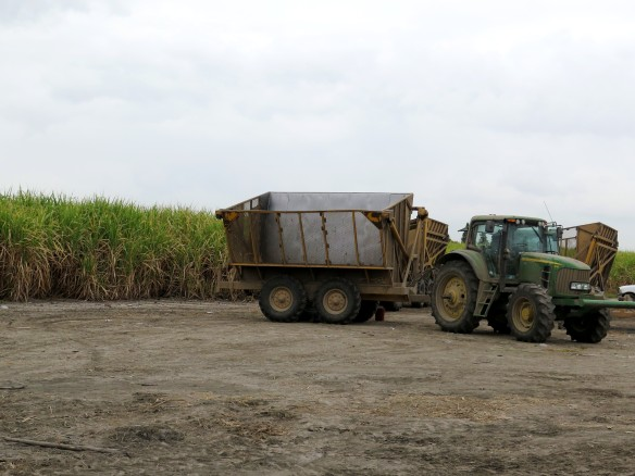 Sugar Cane Wagon and Truck - IMG_0374_1R