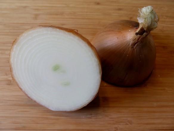 Onion - 2 - IMG_1940_1