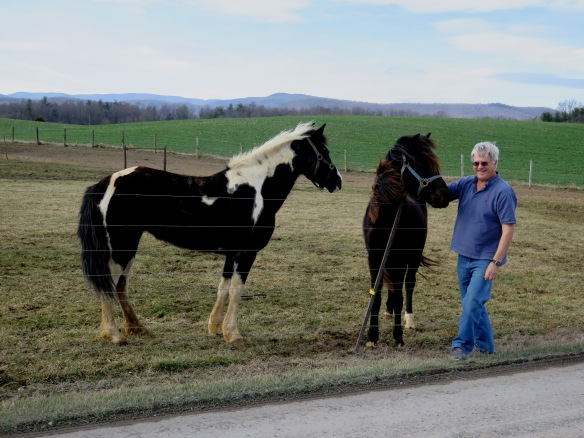 Galen and Horses - IMG_2527