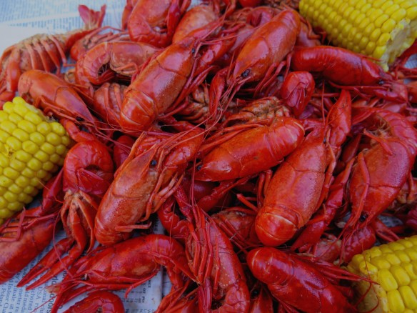 boiled crawfish - 1 -IMG_3560_1