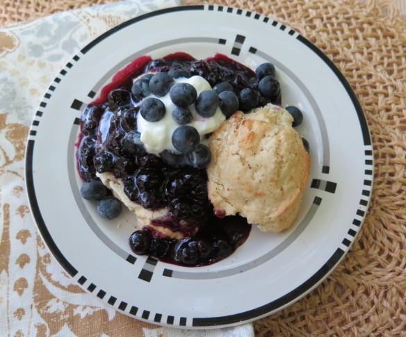 Ripe Blueberry Sauce and Shortcakes - 1 - IMG_3550_1