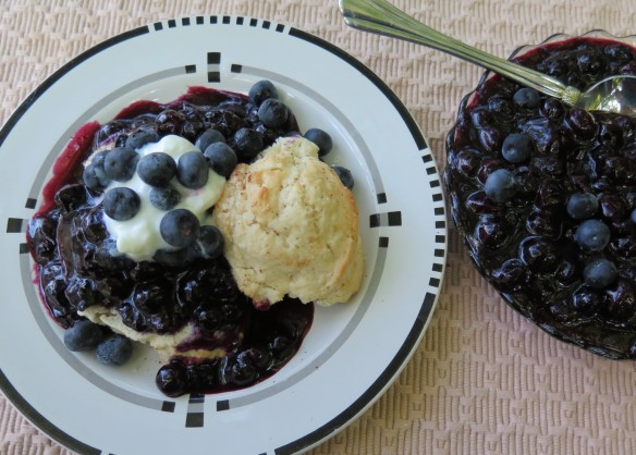 Ripe Blueberry Sauce and Shortcakes - 2 - IMG_3556_1