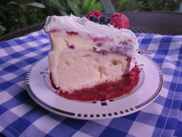 Slice of Ice Cream Cake with Raspberry Sauce - IMG_3780_1