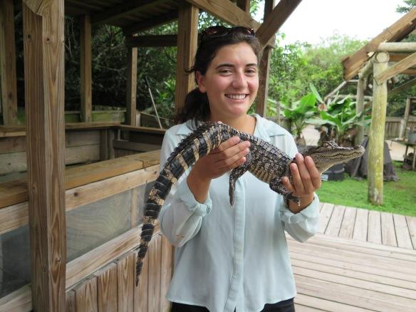Alligator - 2 - with Caroline - IMG_4315