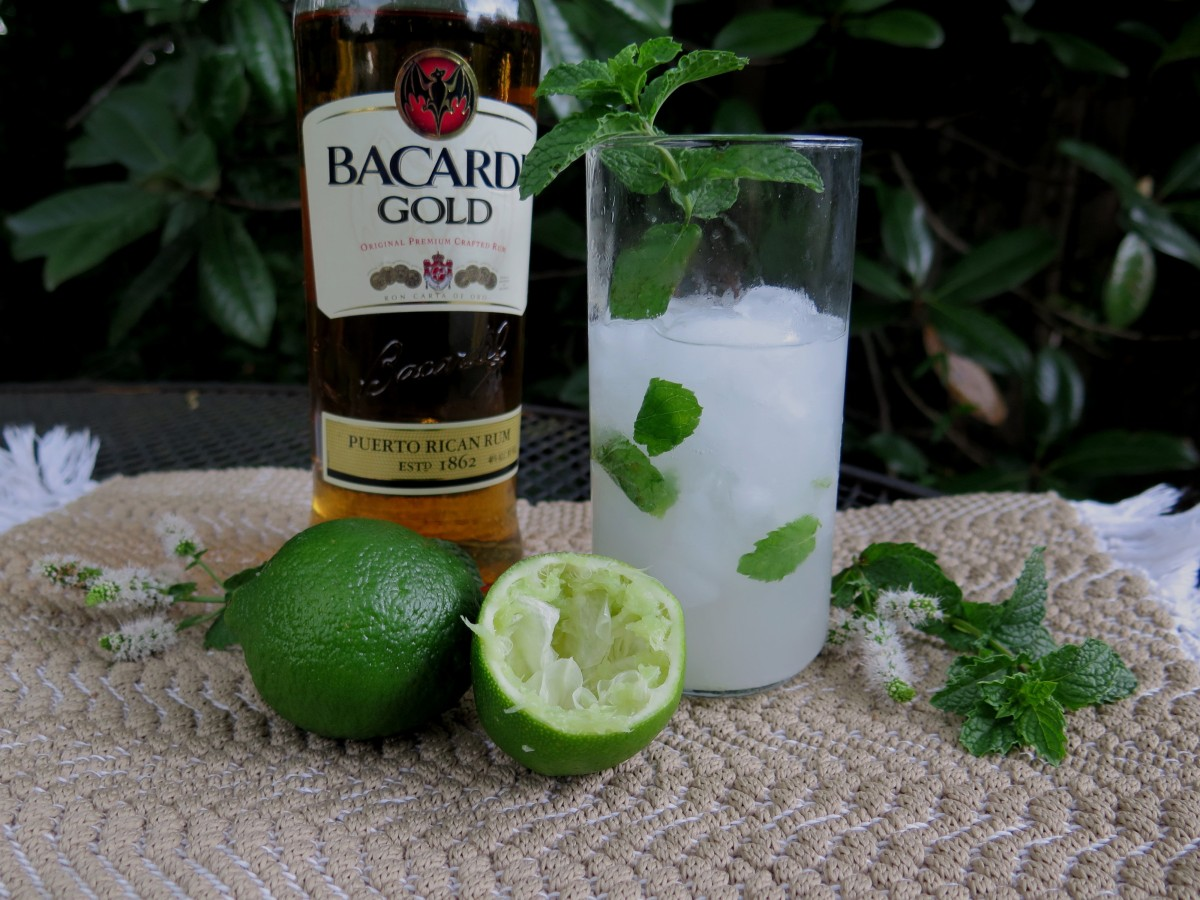 Refreshing Cuban Mojito Rum Cocktail | beyondgumbo