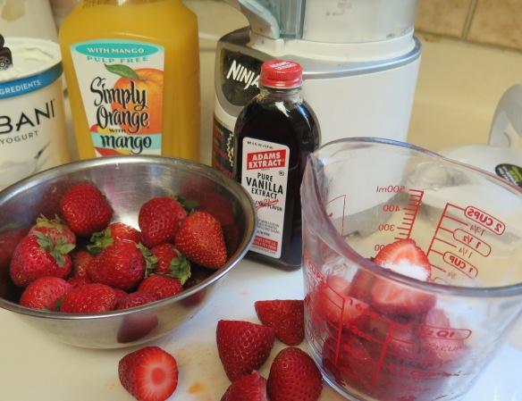 Ninja Mixer and Strawberry Orange Yogurt Smoothie - IMG_4532