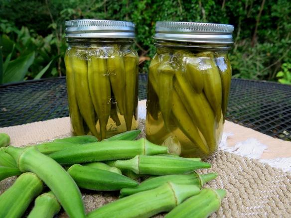 Pickled Okra and Fresh Okra - IMG_4721