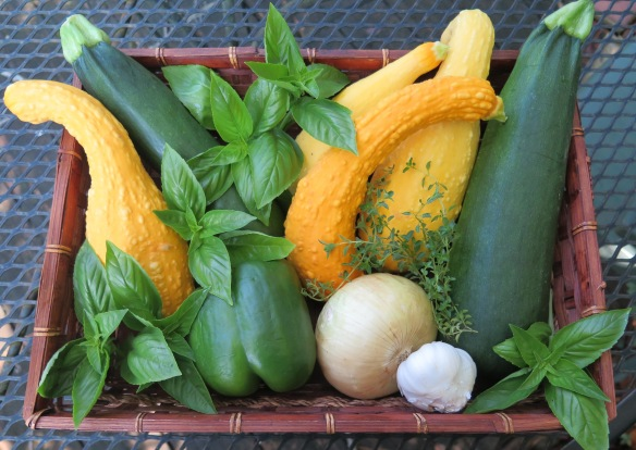 Summer Squash and Basil Medley Ingredients - 2 - IMG_4641