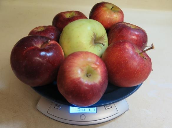 New York Apples for Apple Pie - IMG_5529