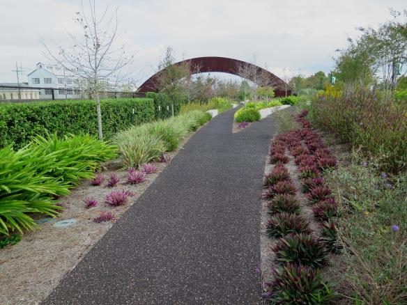 Crescent City Park - 2 - IMG_5296