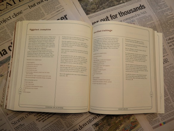 Recipe Book Page - IMG_5741_1