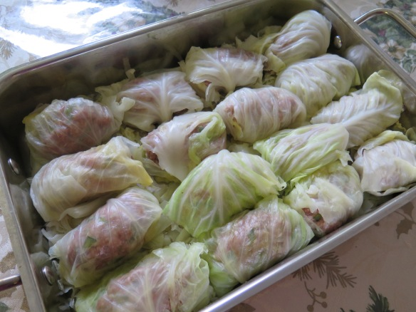 Rolled Cabbage leaves ready for sauce - IMG_2573