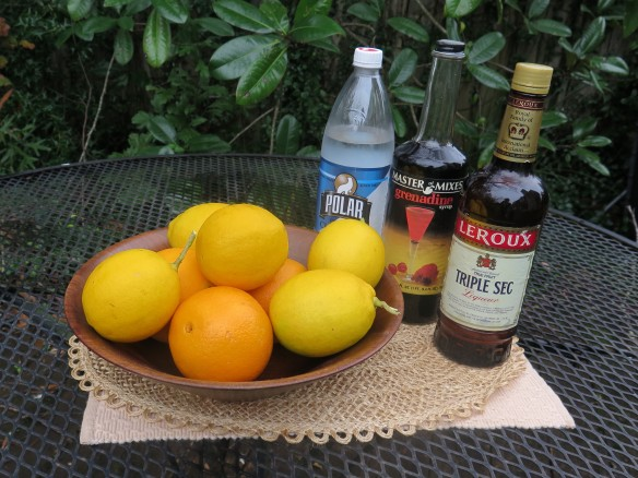 Ingredients for mimosas - IMG_6763_1
