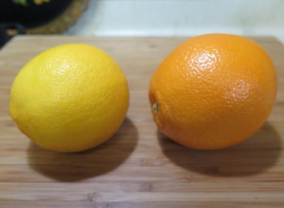 Meyer Lemon and Naval Orange - IMG_6607_1