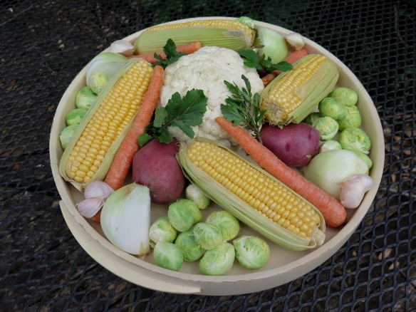 Vegetables for Mulligan Stew - IMG_7518