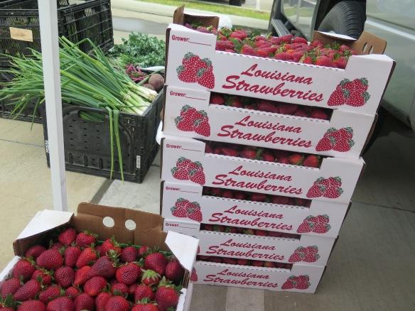 Louisiana Strawberries - IMG_8638