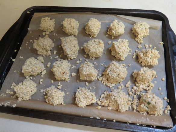 Falafel ready for frying - IMG_8938