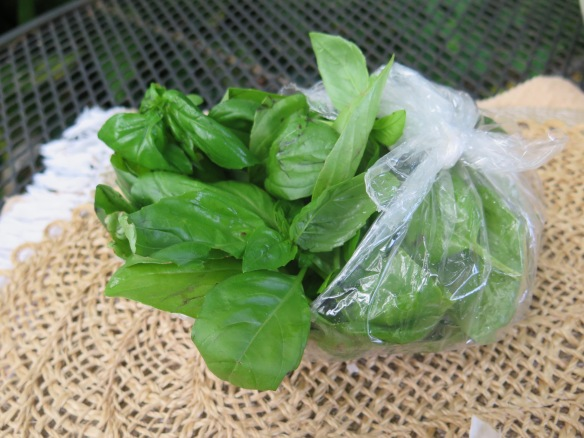 Fresh Basil from CSA Basket