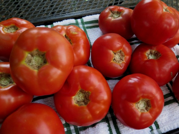 Naquin and Creole Tomatoes