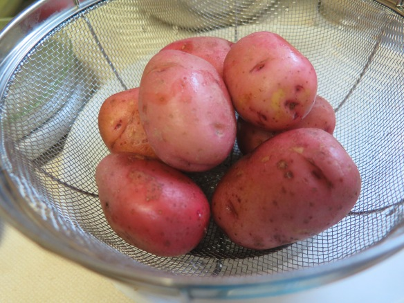 New Red Potatoes - IMG_9324