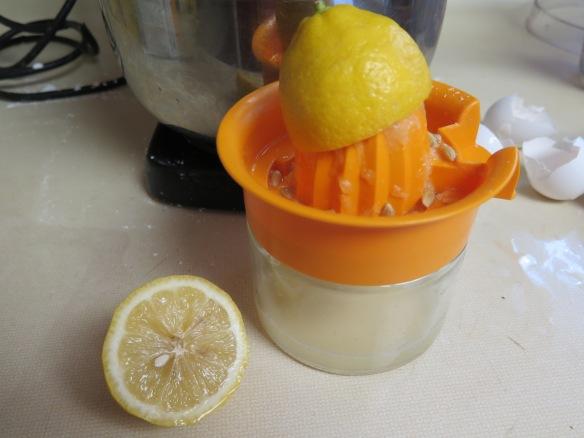 Squeezing Lemons - IMG_9804