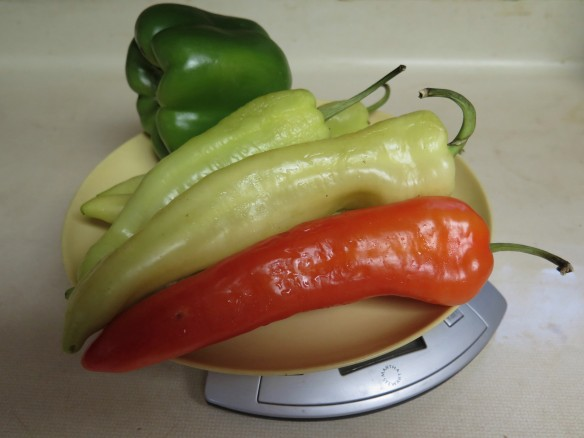 Banana Peppers and Bell Pepper - IMG_0229_1