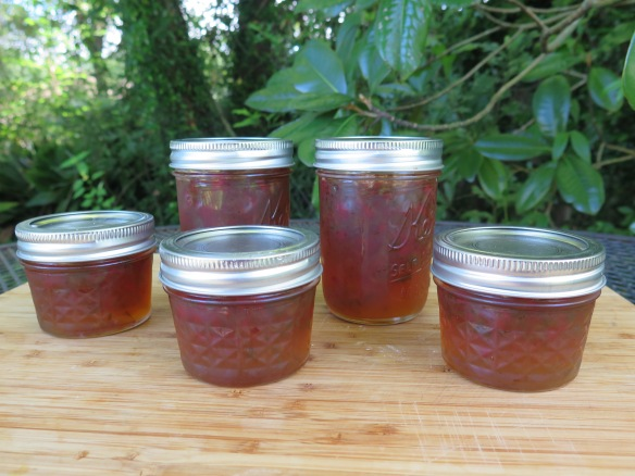 Hot Jalapeno Pepper Jelly - IMG_0396