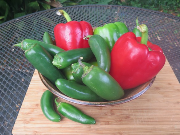Jalapeno - Green and Red Bell Peppers for Jelly - IMG_0319_1