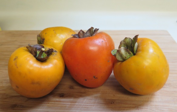 louisiana-persimmons-2016-img_1422