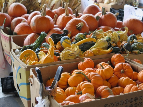 rochester-farmers-market-and-pumpkins-and-gourds