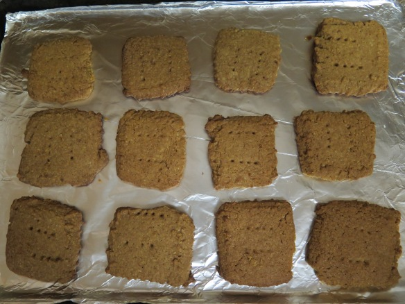 graham-crackers-on-baking-sheet-img_1681