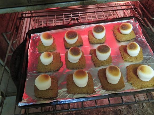 roasted-marshmallows-img_1684